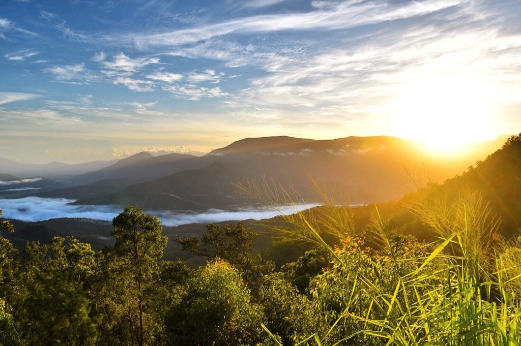Sunrise at Gillies Range Lookout