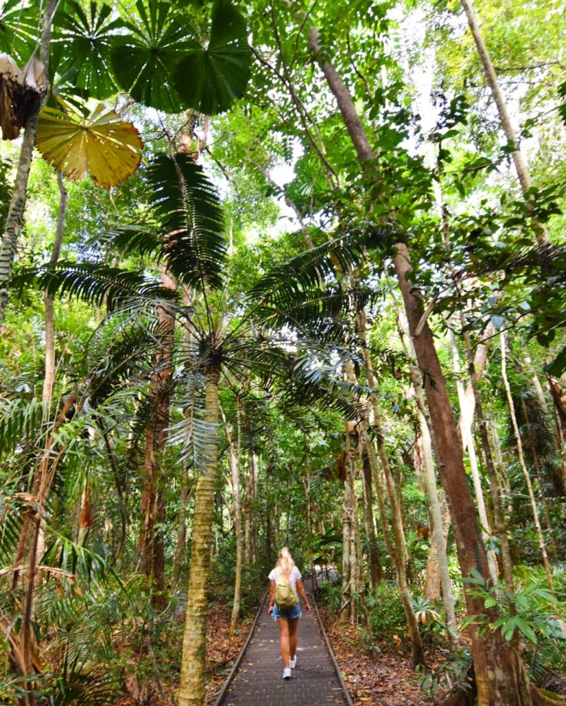 Girl walking through rainforest