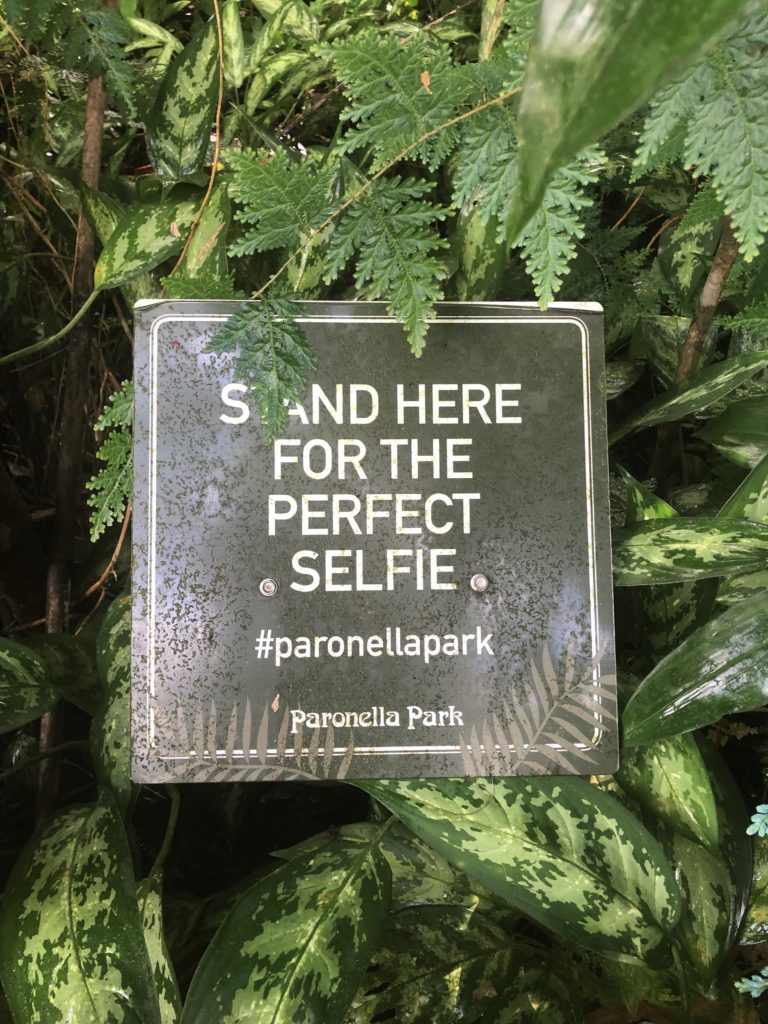 "A sign saying ""Stand here for the perfect selfie"" situated amongst plants"