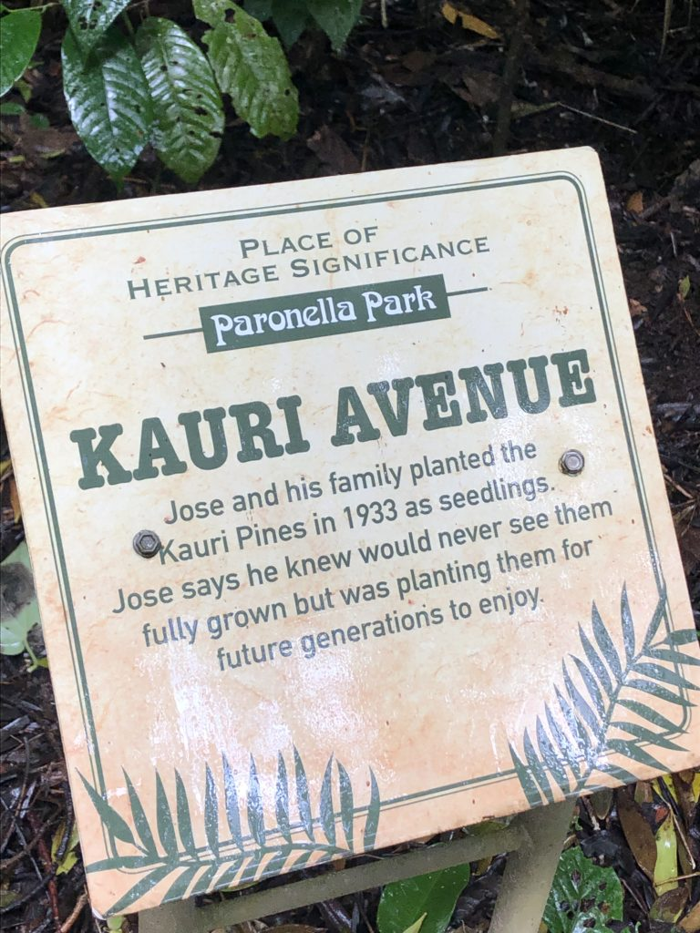 Sign that reads Kauri Avenue at Paronella park