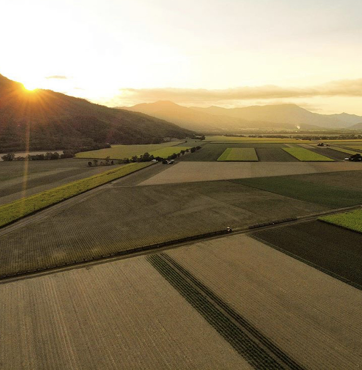 Walshs Pyramid cane fields Cairns Drone Sarah Latham
