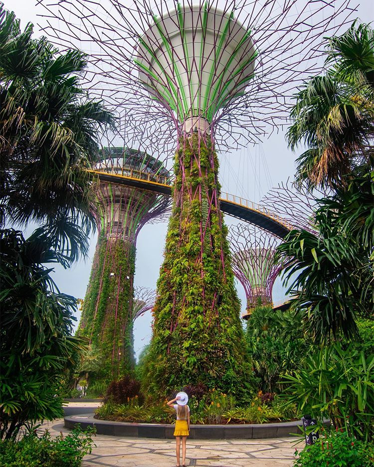 Gardens by the Bay Singapore Sarah Latham Bucket List Destinations
