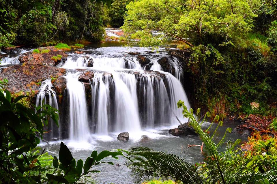 Wallicher Falls Atherton Tablelands Cairns Sarah Latham