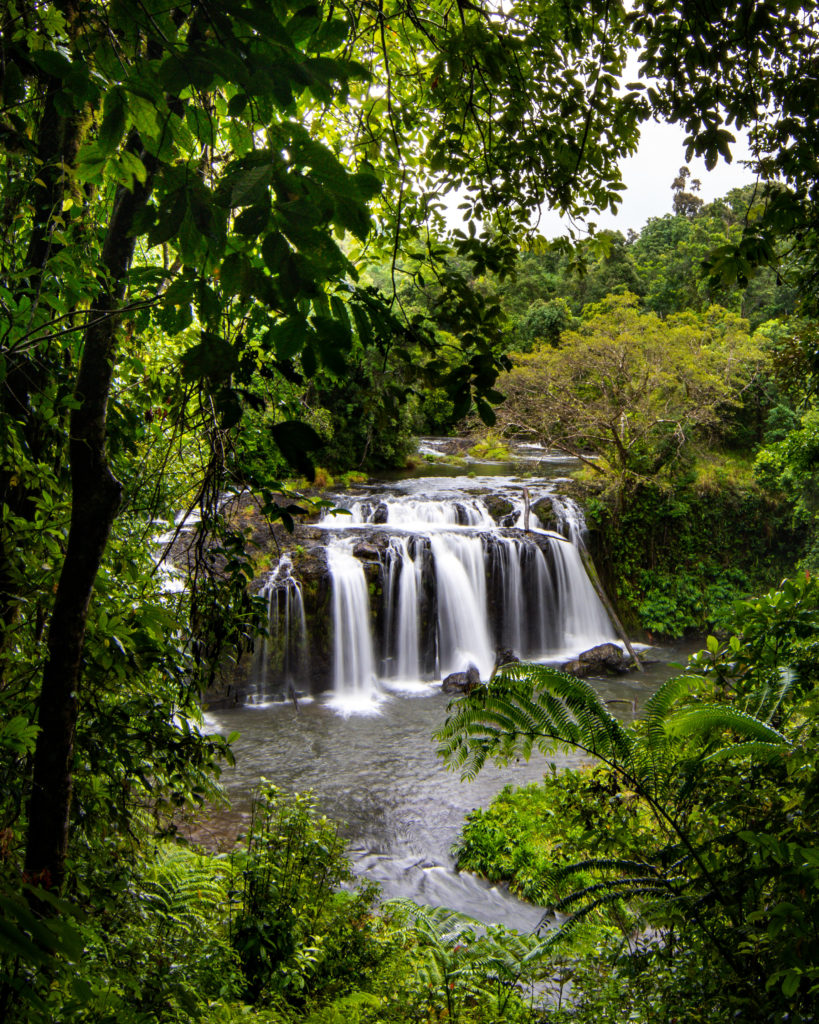 Wallicher Falls Cairns Sarah Latham