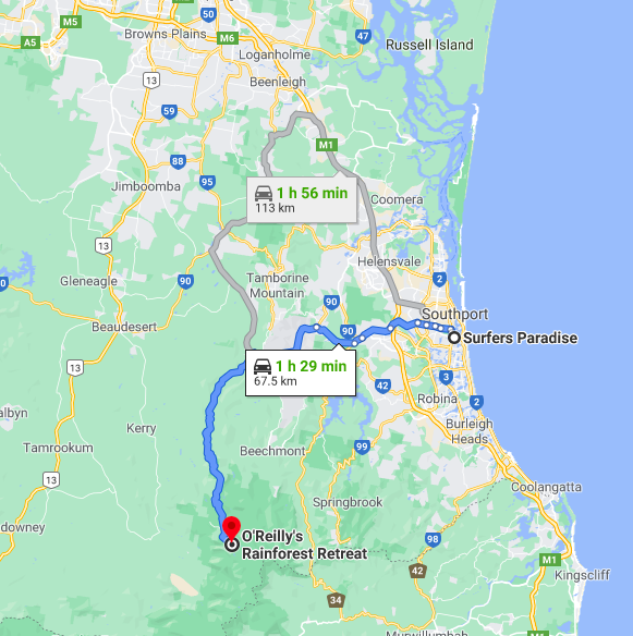 Surfers Paradise to O'Reilly's Rainforest Retreat