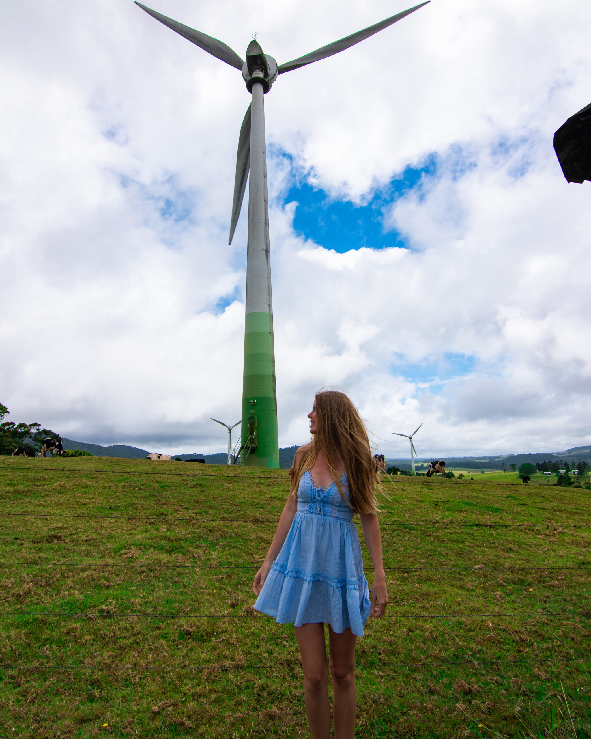 Windy Hill Wind Farm Ravenshoe Sarah Latham