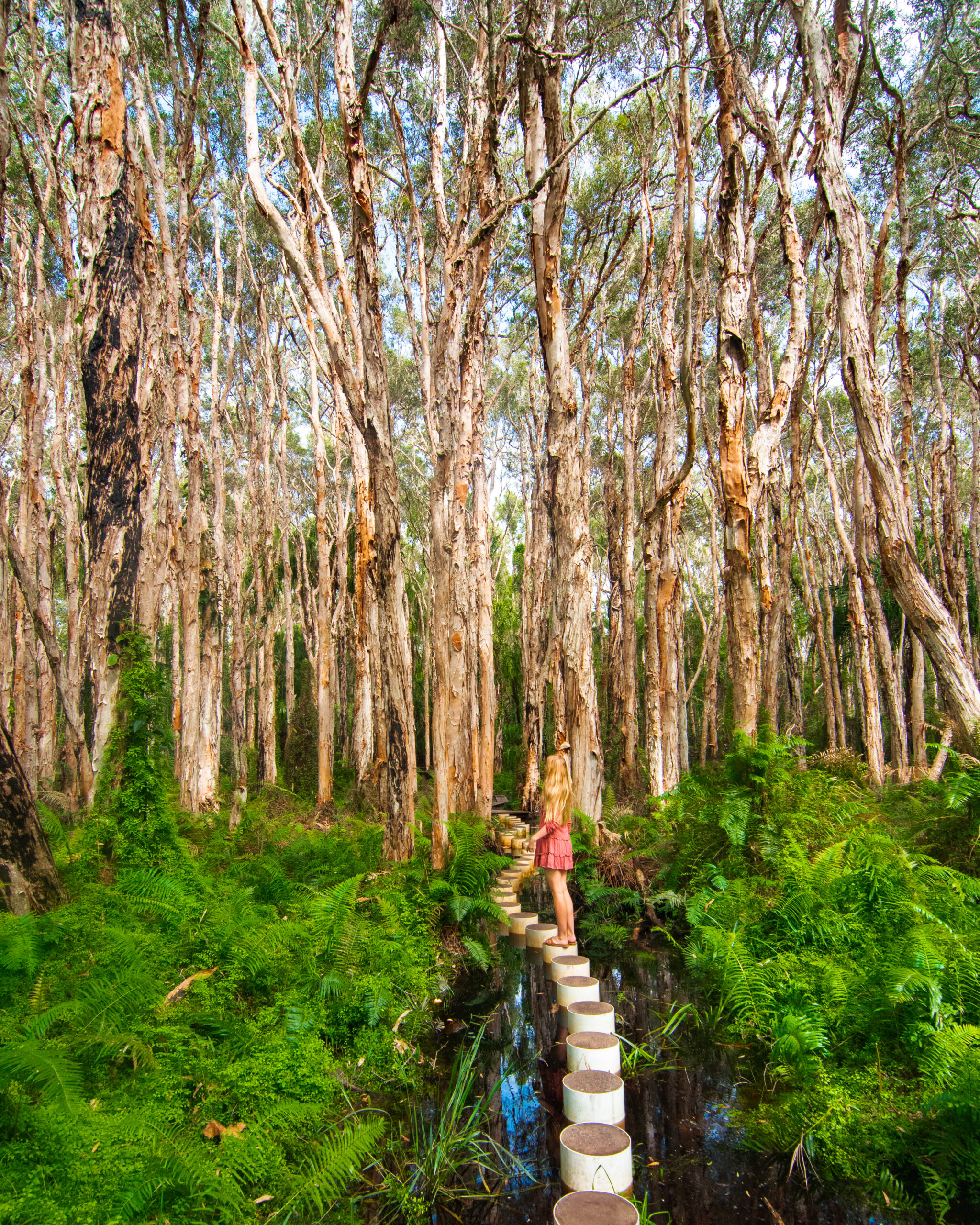Girl standing in the Paperbark Forest in Agnes Water Sarah Latham